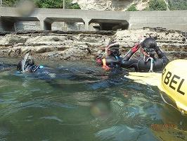 生物部が臨海実習を実施しました。
